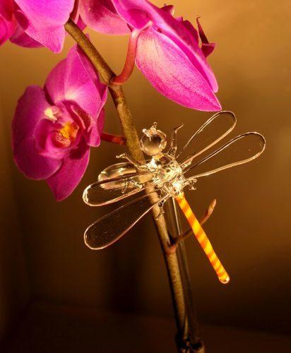 Orchideenstab